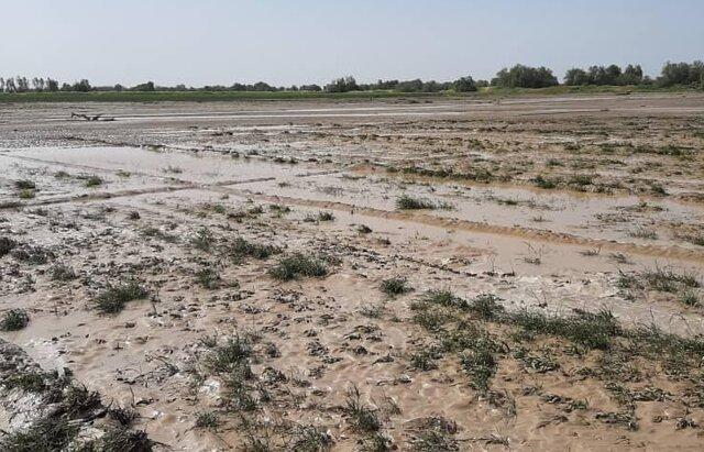 خسارت 50 میلیارد ریالی طوفان و سیل اردیبهشت به بخش کشاورزی