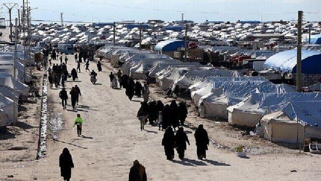 بیش از 600 کودک داعشی اروپایی در اردوگاه های شمال سوریه نگهداری می شوند