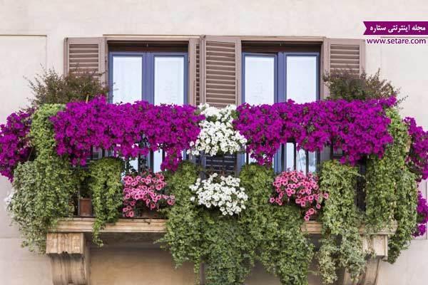 روش هایی برای ایجاد باغ در خانه های کوچک
