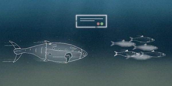کانون هماهنگی دانش، صنعت و بازار آبزیان ایجاد شد، یاری به توسعه صنعت پرورش ماهی در قفس