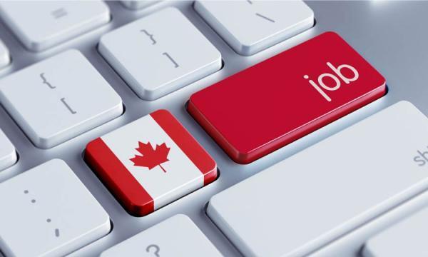 تور کانادا: برترین مشاغل کانادا بعد از کرونا